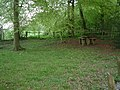 Picnic Site, Cockshoots Wood - geograph.org.uk - 167393.jpg