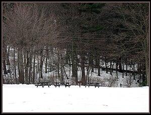 Frances Slocum State Park - A picnic area at the park