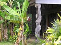 Pilar de casa tipica - panoramio.jpg