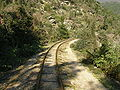 Pilio narrow gauge line - 16.JPG