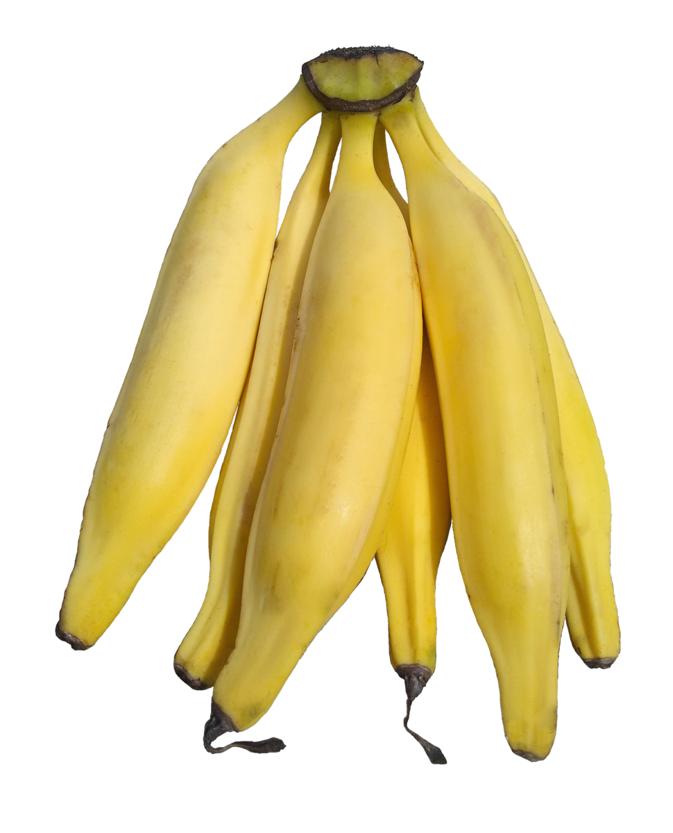 Plantains on white background