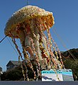 Plastic jellyfish out of waste (TK).JPG