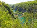 Plitvice Lakes National Park Scenery.jpg