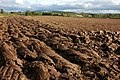Ploughed field near Earl's Croome - geograph.org.uk - 1011621.jpg