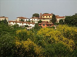 Incixa in Val d'Arno – Panorama