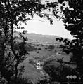 """Pogled na """"gerblje"""" pri novi Golobini (požiralniku) v Danah - Škriljavo pri Starem trgu 1962.jpg"""