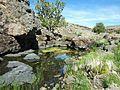 Pond-Sheldon Contiguous WSA-Surprise District-Scott Moore (19984054501).jpg