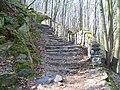 Posázavská stezka, schody u Klimentovy vyhlídky (01).jpg