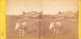 Prés et vache en Isère.tif