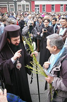 Pr. Lucian Mic at the Palm Sunday Procession in Resita- March28 2010 2