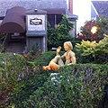 Provincetown, MA, USA - panoramio (52).jpg
