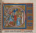 Psalterium Feriatum Cod Don 309 267.jpg