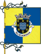 Flag of Mortágua