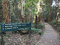 Purling Brook Falls circuit path.JPG