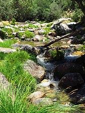 Río Manzanares 3.jpg