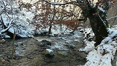 Río Tirón en la Sierra de la Demanda en invierno.jpg