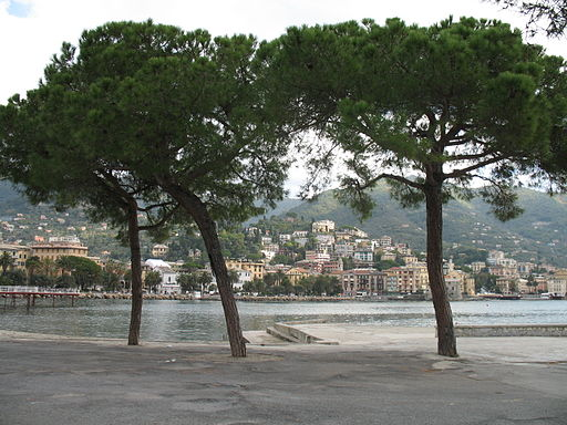 Rapallo-IMG 1580