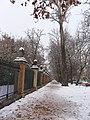 Reja del Jardín del Príncipe - Aranjuez nevado - panoramio.jpg
