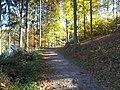 Remscheid - panoramio.jpg
