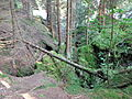 Reste eines mittelalterlichen Erzbergwerks im Oberharz 02.JPG