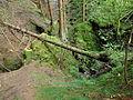 Reste eines mittelalterlichen Erzbergwerks im Oberharz 06.JPG