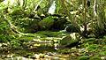 Rio Pisuerga, a escasos metros de la cueva Cobre.jpg