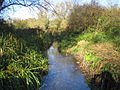 River Bulbourne in Bourne End - geograph.org.uk - 615132.jpg