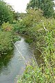 River Pang - geograph.org.uk - 981394.jpg