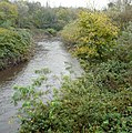 River Tame - geograph.org.uk - 1024747.jpg