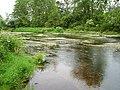 River Tar - An Teara - geograph.org.uk - 233699.jpg