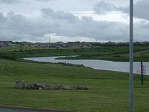River Ugie - geograph.org.uk - 138170.jpg