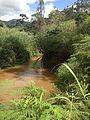Rivière Bamena 2.jpg