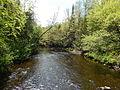 Rivière Noire (rivière Bécancour) 02.JPG