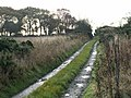 Road into Over Carnbee - geograph.org.uk - 71992.jpg
