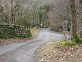 Road junction in the woods - geograph.org.uk - 1177956.jpg