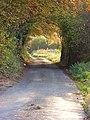 Road near Rockwell End - geograph.org.uk - 605867.jpg