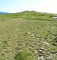 Robinson Plateau - geograph.org.uk - 28238.jpg