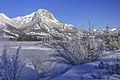 Roche Ronde reflected in the Athabasca River.jpg