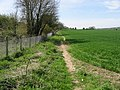 Route of the Stour Valley Walk alongside the railway line - geograph.org.uk - 784162.jpg