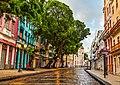 Rua do Bom Jesus, Recife antigo.jpg