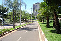 Rua em Araras - SP.jpg