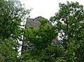 Ruine Kallenberg 1.jpg