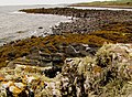 Ruined pier at Stairhaven - geograph.org.uk - 583481.jpg
