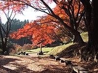 Ruins of Sakuyama castle (Tochigi, Japan).jpg