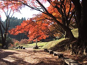 Ruins of Sakuyama castle (Tochigi, Japan).jpg