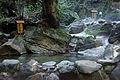 Ryokukeitouen Kirishima City Kagoshima Pref05n4592.jpg