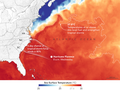 SST of N Atlantic with Florence's chance.png