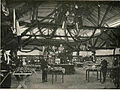 Sadna razstava v Radovljici 1904.jpg