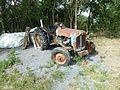 Saint Nectaire Eté2016 tracteur fordson dexta.jpg