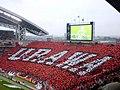 Saitama Stadium 2002 - panoramio.jpg